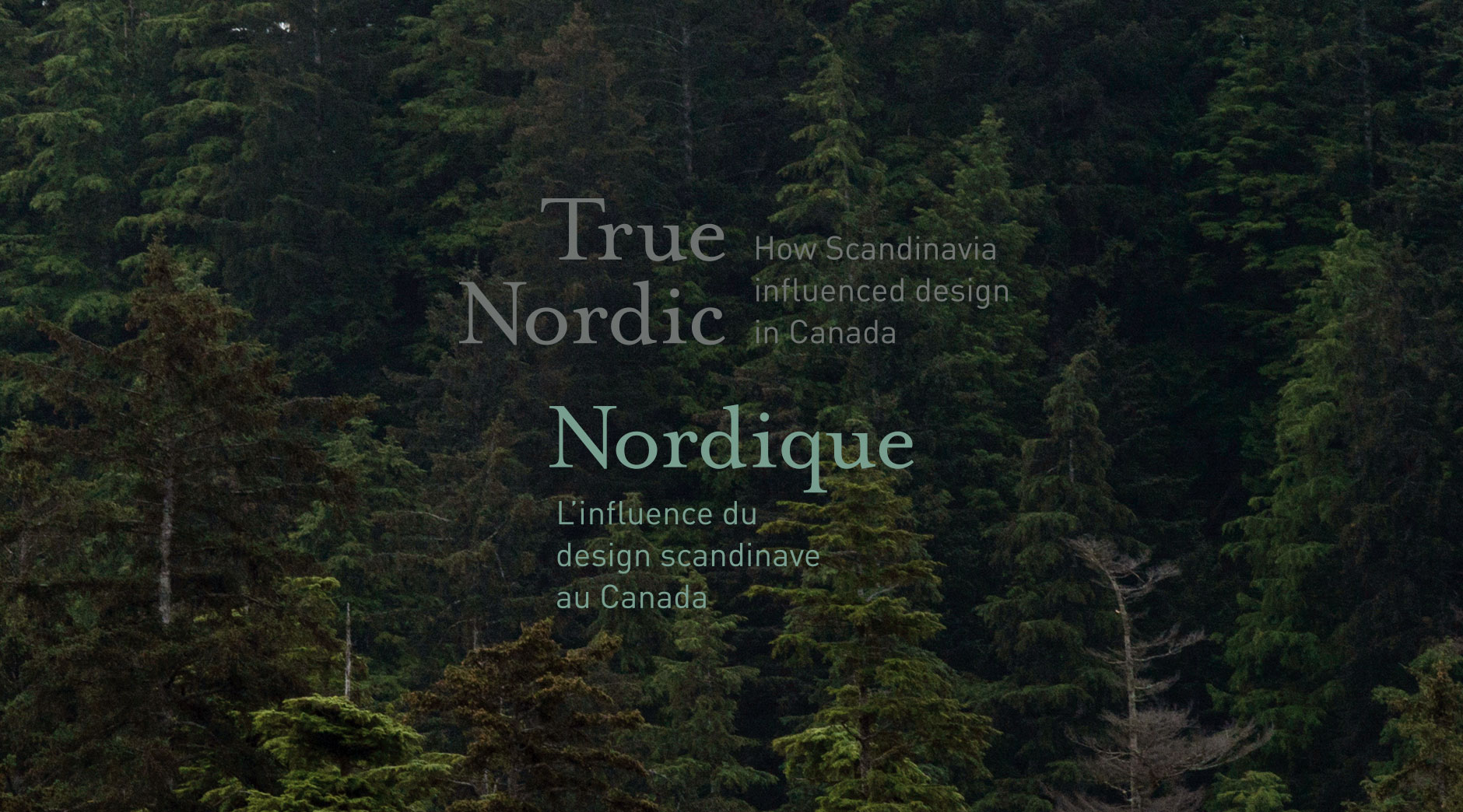 True Nordic exhibit logo